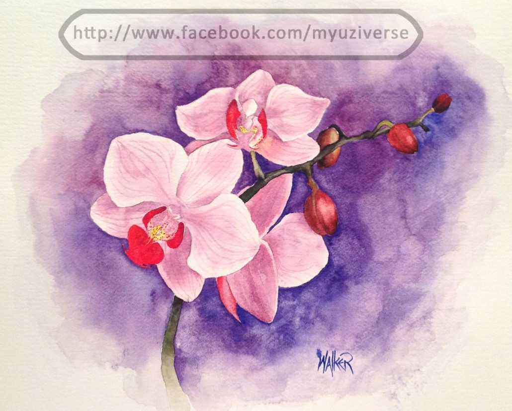 Orchids | Art by M.L. Walker | Myuzing