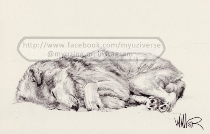 Wolf | Animals by M.L. Walker | Myuzing