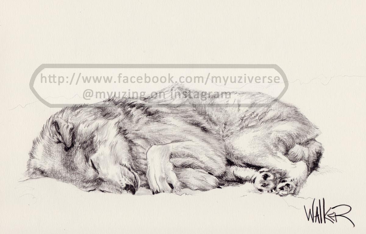 Wolf | Animals by M.L. Walker | Myuzing