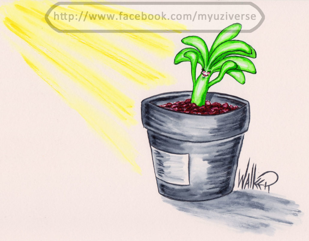Plant Girl 3 | Cartoons by M.L. Walker | Myuzing
